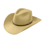 Wear Gordon's stetson.png