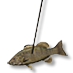 Spear fish.png