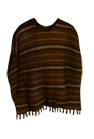 Wear Brown Poncho.png
