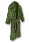Wear Desi's robe.png
