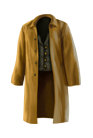 Wear Wanderer's coat.png